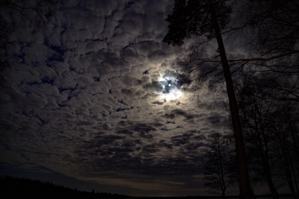 Öösel järve ääres